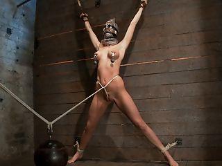 Scene Four/four Of Nov's Demonstrate: Brutal Gag, Devastating Orgasms, A Sukaranbo From Hell Total Suffering - Hog Tied